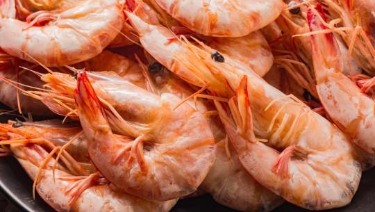 Sea water treatment for shrimp farming - ProMinent